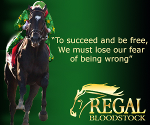regal bloodstock
